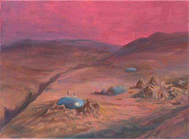 Sebastian Meschenmoser, Ringel XII, 2018, oil on canvas, 25 x 35 cm